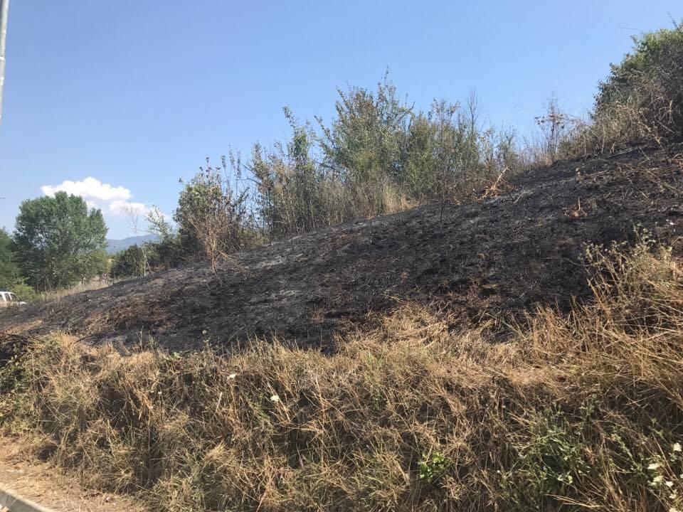 Incendi, siglata intesa tra Vigili del fuoco e Regione Siciliana