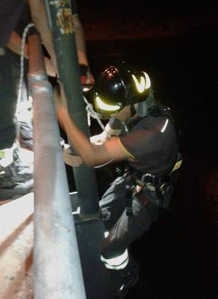 I vigili del fuoco intervengono sul ponte Ipazia per salvare un gatto