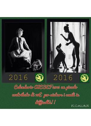 Ed ecco alcune delle foto del calendario di A.I.C.S.E.F. Inizia la vendita in favore degli animali
