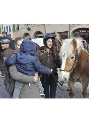 Ricorrenza di Sant'Antonio Abate, gli animali invadono piazza Marsilio Ficino: grande festa per la tradizionale benedizione