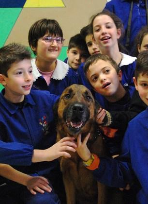 """""""Un cane in classe"""": alla Massa l'educazione cinofila si studia a scuola. Ed i bambini diventano maestri della materia"""