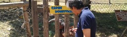 I love parco! Salvaguardia degli animali e dell'ambiente e migliore accoglienza per i visitatori